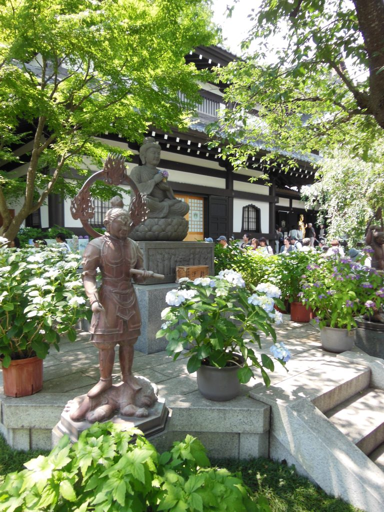 あじさいで有名な長谷寺