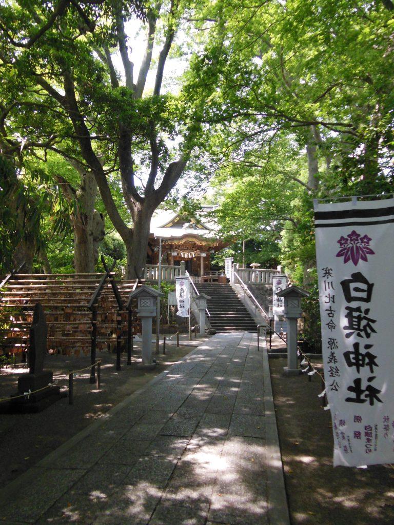 白旗神社・社殿