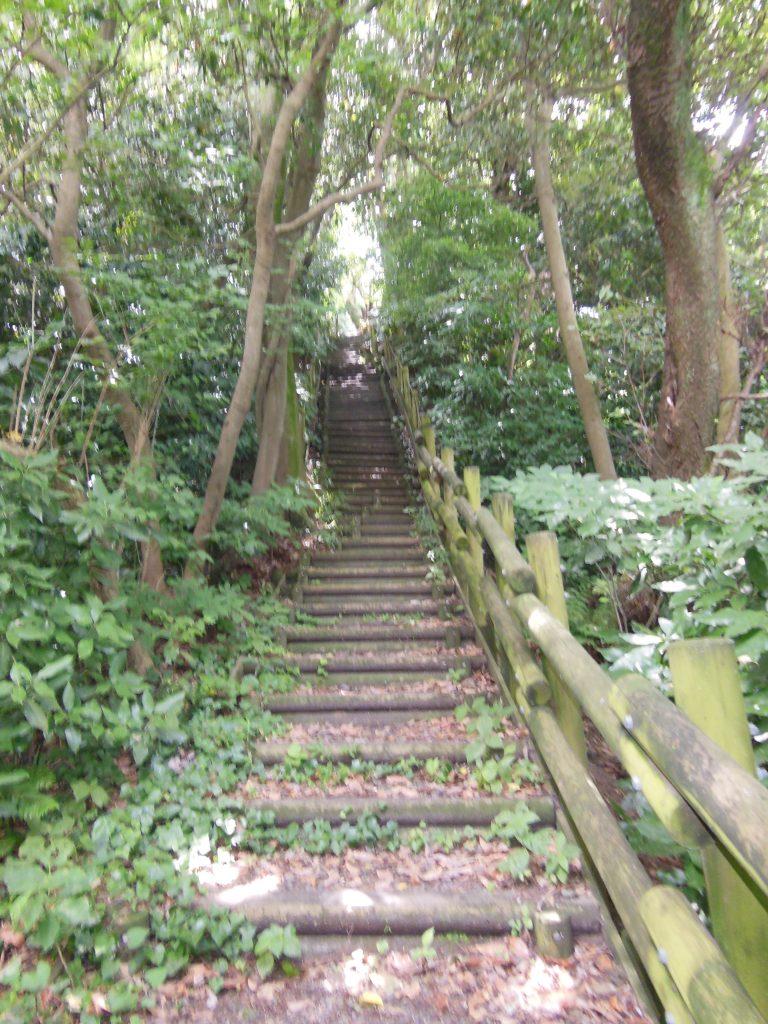 真名瀬コースの登り坂