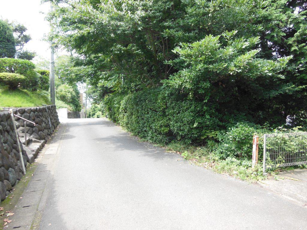 伊勢山緑地を歩く