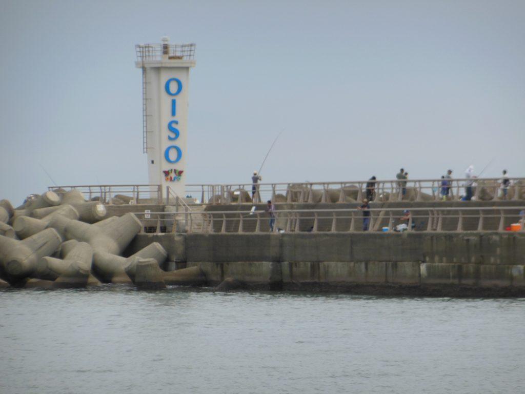 多くの釣り人でにぎわう大磯港