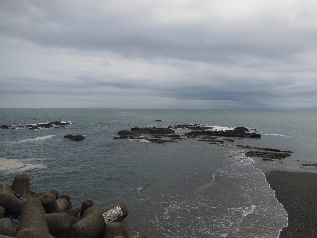 アオバトが飛来する照ヶ崎海岸