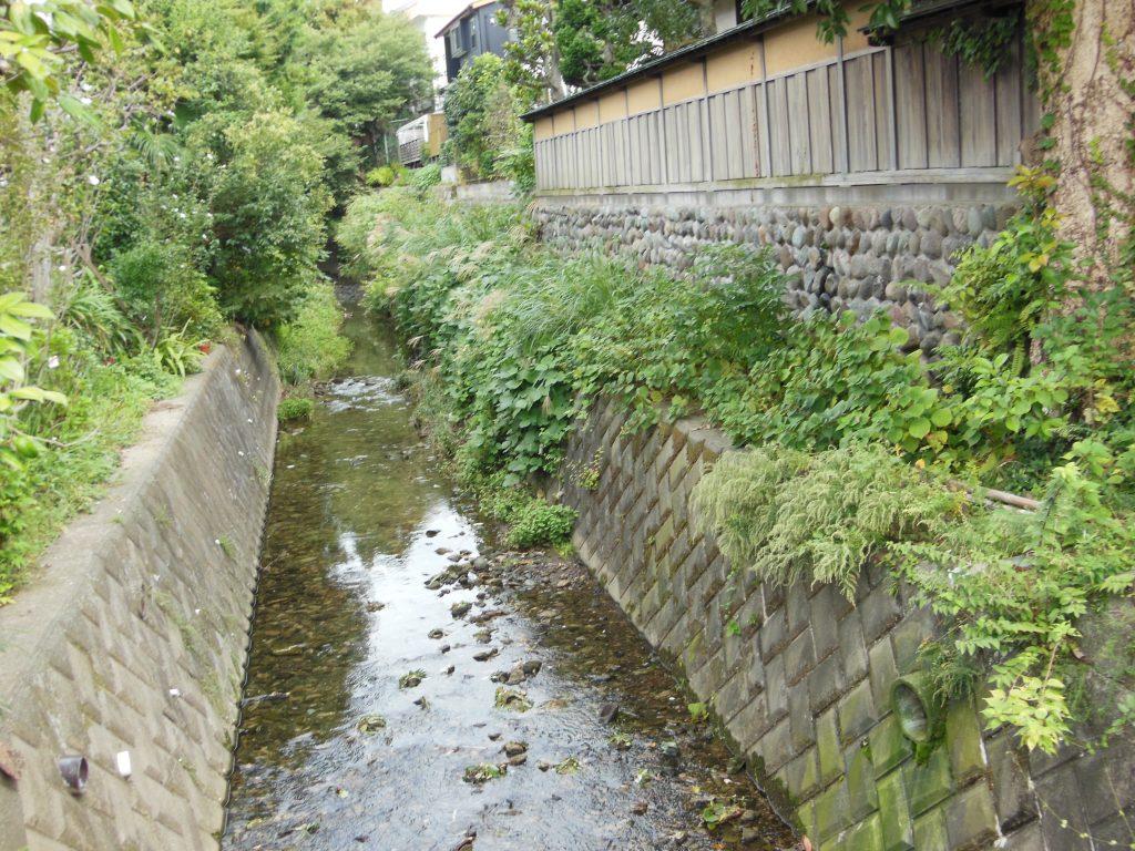 住宅地を流れる二階堂川