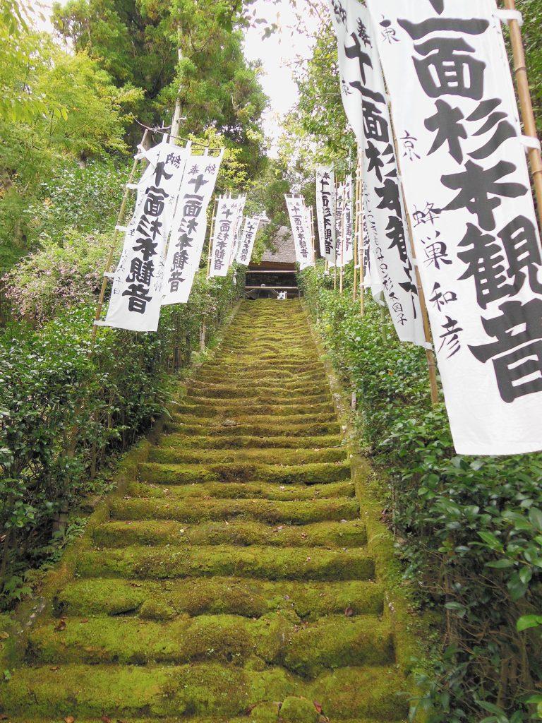 杉本寺の苔の道