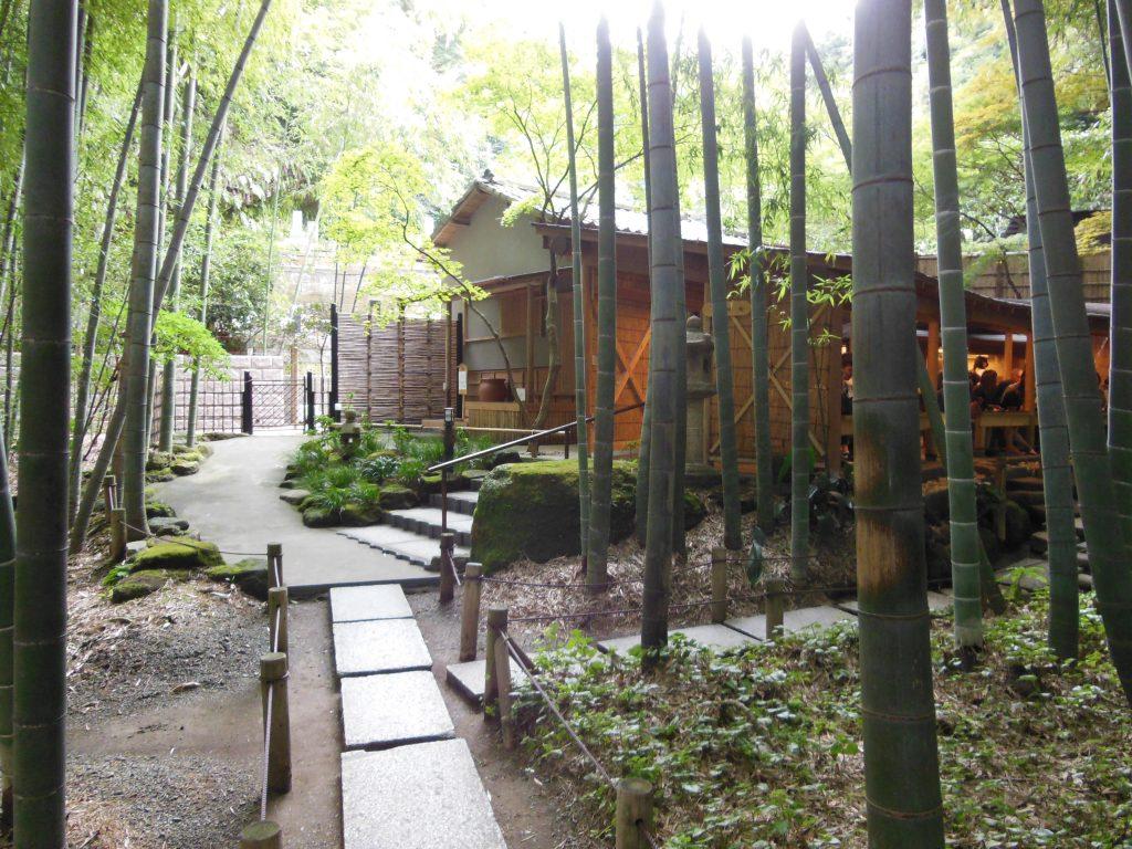 竹林の奥に佇む報国寺のお茶処