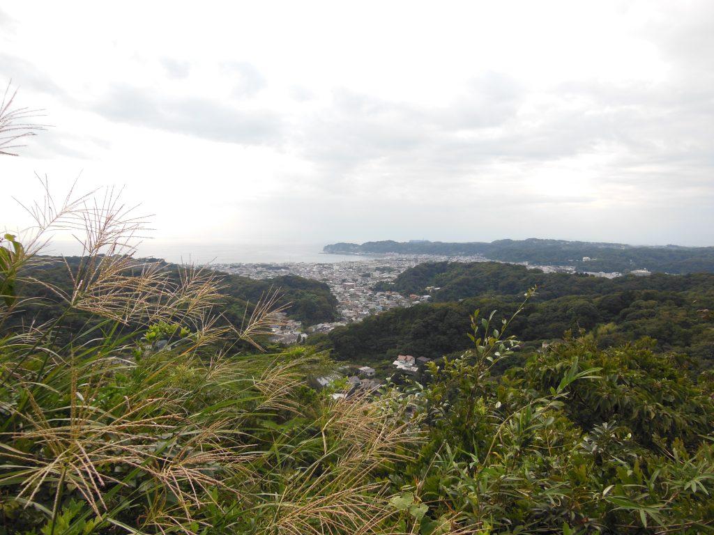 衣張山頂上からの眺望とススキ