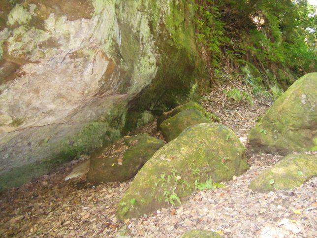 苔むした大きな岩が点在する