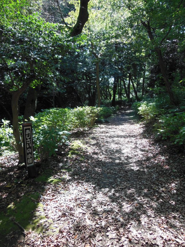 葛原岡神社駐車場から延びるあじさいの小径