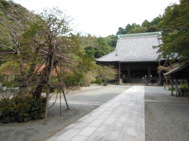 妙本寺・本堂を臨む