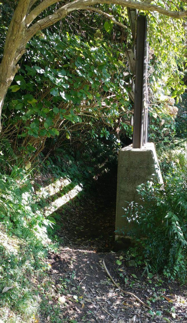 名越切通し・山道への入口