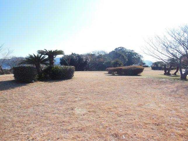 なだらかな丘が広がる大崎公園