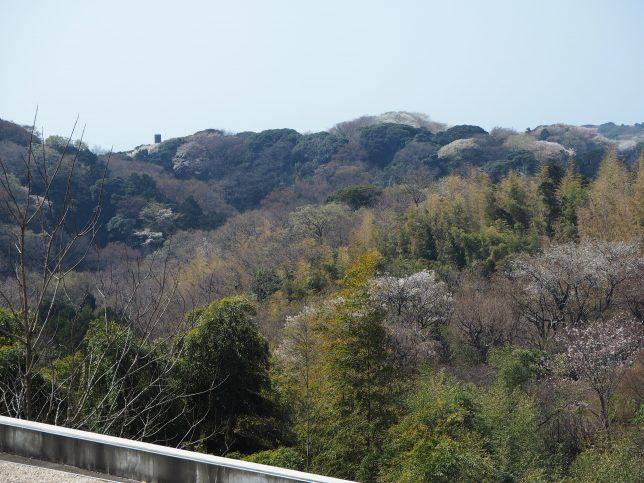 鎌倉山から西鎌倉方面を臨む