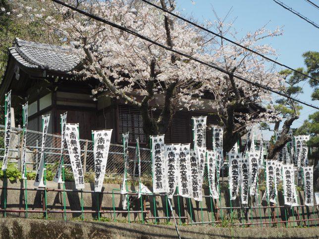 虚空蔵堂と桜