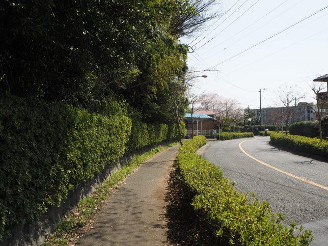 大庭城址公園を後にして辻堂駅方面へ