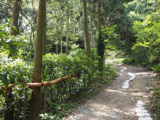 十二所果樹園への道