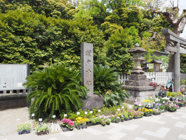 金沢八景駅からほど近い瀬戸神社