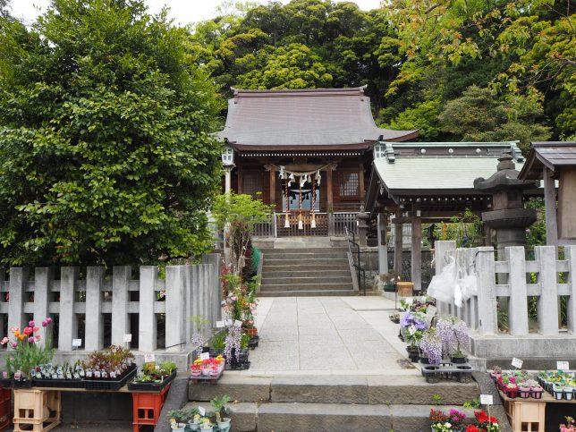 瀬戸神社の境内