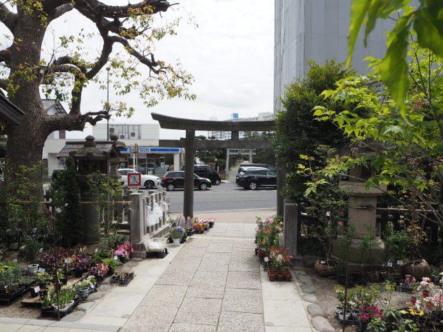 瀬戸神社の境内から弁天社を臨む