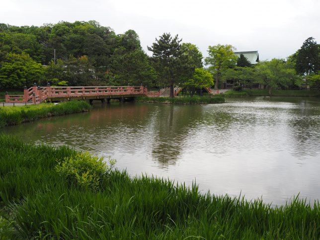 金堂側から見た称名寺の庭園