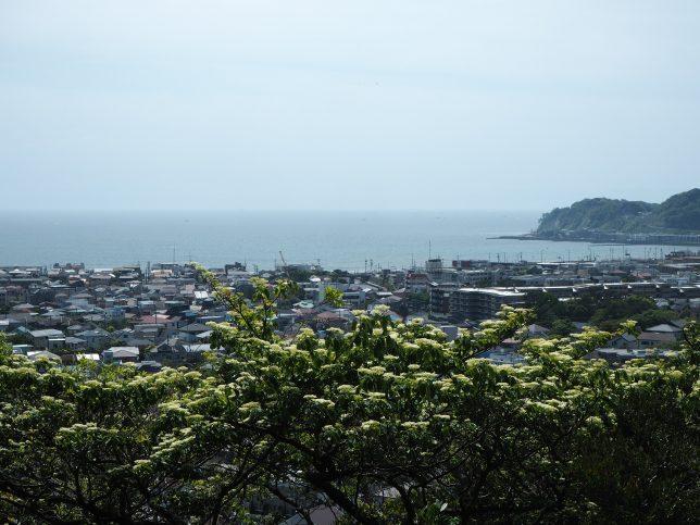 祇園山ハイキングコース見晴台からの眺め