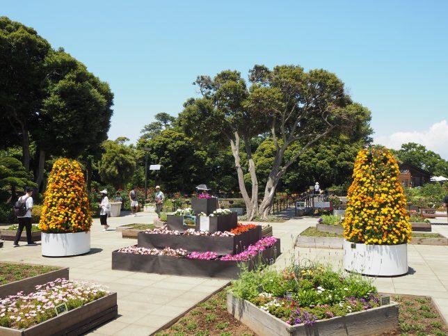 色とりどりの花が咲くサムエルコッキング苑の花壇