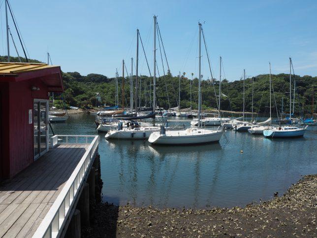 多くのヨットやボートが係留されている油壷湾