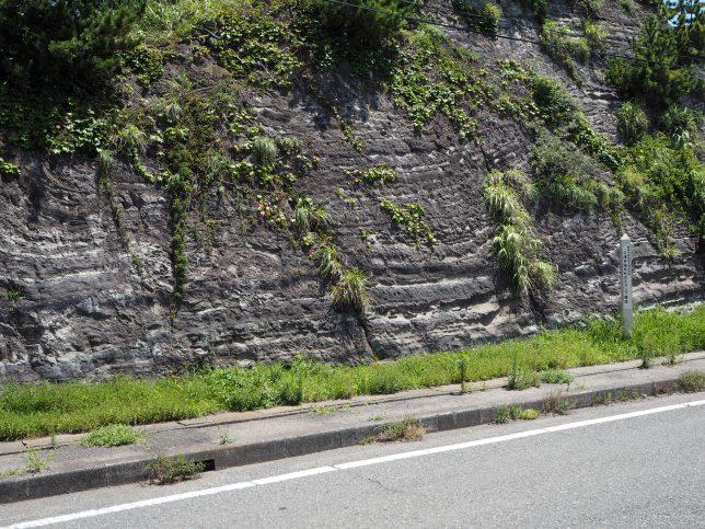 三浦市海外(かいと)町のスランプ構造