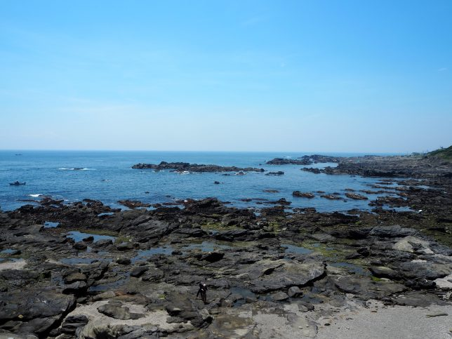 城ケ島南岸の岩場と磯