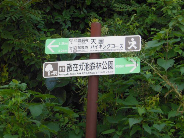 天園ハイキングコースへの標識に従って進む