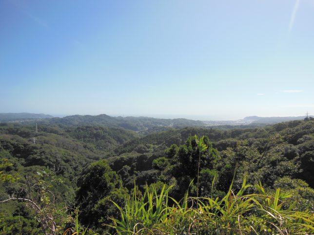 大平山山頂付近からの眺め