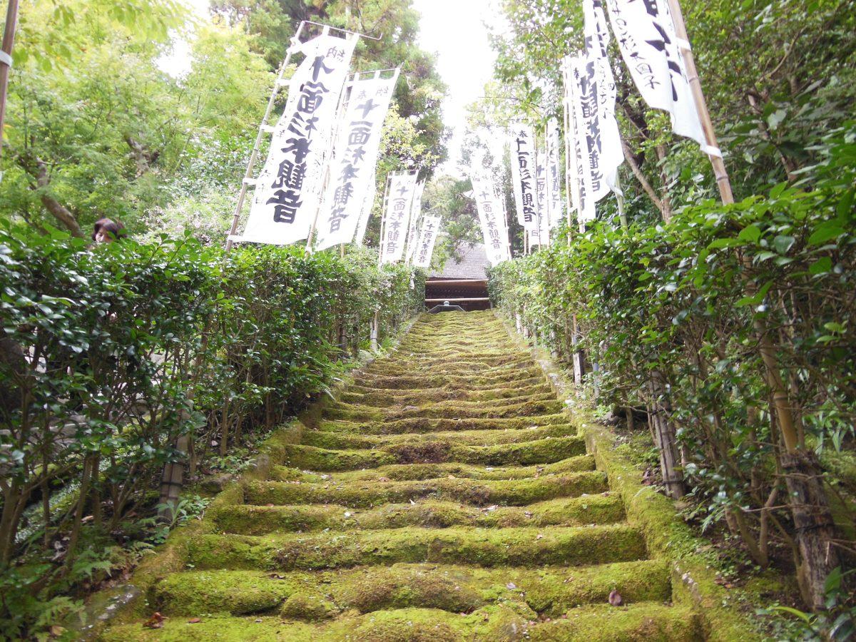 歴史情緒あふれる杉本寺の苔の階段