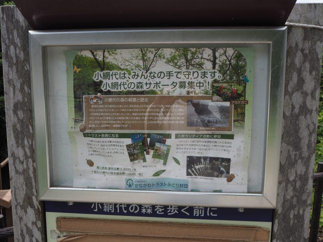 小網代の森の保全活動に関する案内