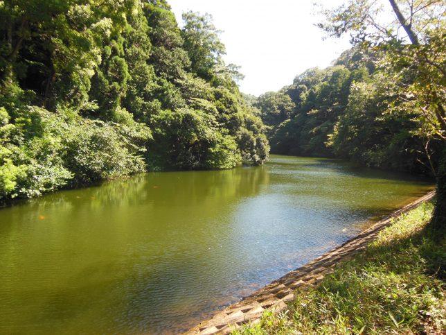 「鎌倉湖」とも呼ばれる散在ガ池